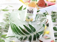 A Bubbly Life Palm Leaf Ice Bucket