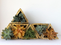 A Piece Of Rainbow Concrete Triangle Planters