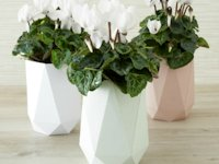 All Things Paper Paper Vase