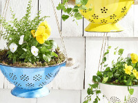 CountryLiving Strainer Planter