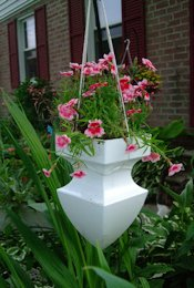 CreatingCottage Garden Hanging Basket