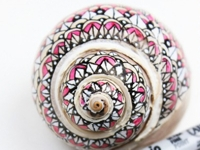 Deavita Painted Snail Shells