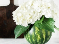 Domestically Blissful Watermelon Vase