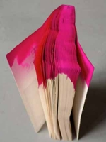 Dunk Dyed Book