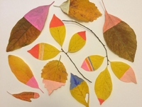 Emily Isabella Painted Leaves