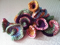 Fiber Art Reflections Crochet Hyperbolic Sculpture