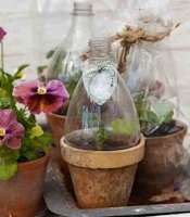 Garden Culture Magazine Plastic Bottle Indoor Greenhouse