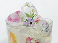 HubPages chipped teacup Floral Ice Cubes