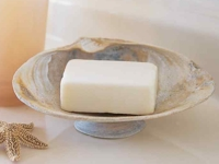 Martha Stewart Seashell Soap Dish
