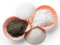 Martha Stewart Shell Salt and Pepper Dishes