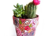 Style and Spice Flowery Planter