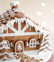 Tikkido Gingerbread House