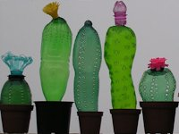 Veronika Richterova Plastic Bottle Cacti