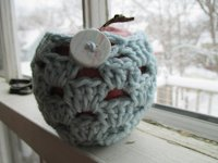 adisoninmadison Crocheted Apple Cozy