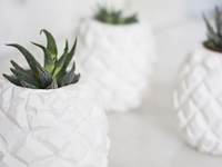etsy studiojanneke Plaster Pineapple Flower Pot