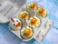 eye candy Chicken Egg Family