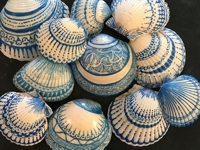 facebook Kellys Brighton Marina Painted Sea Shells