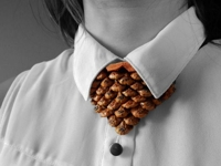 instructables CsiGiRe Pine Cone Jewelry
