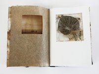 lotta helleberg Nature Inspired Artist Book