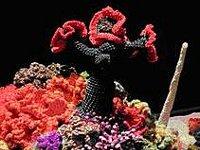 Aufruf Ein Korallenriff Zu Häkeln Unikatissimas